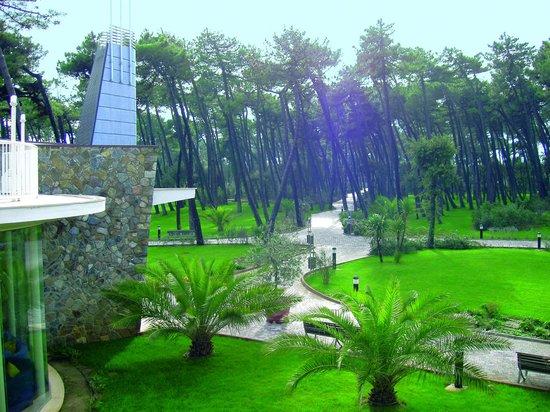 Green Park Resort - TH Resorts: 5 ettari di parco