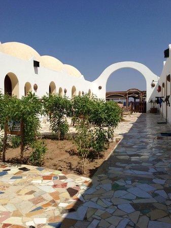 Ghazala Hotel: interno