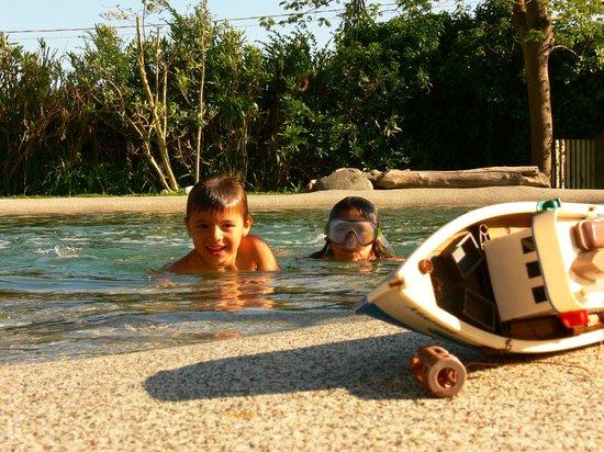 B&B Dreamers: Pool
