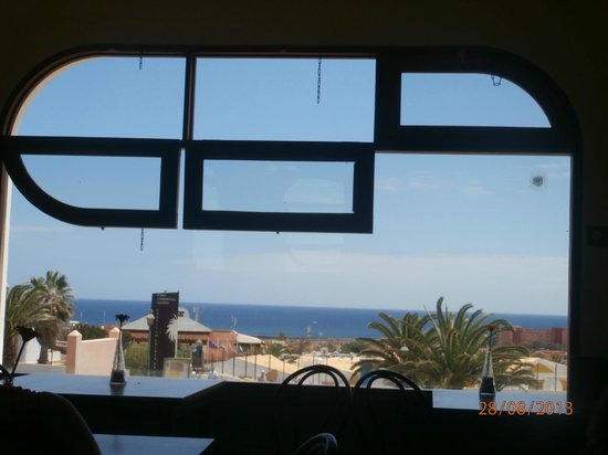 The Pickled Palm: The Beautiful View from the inside window.
