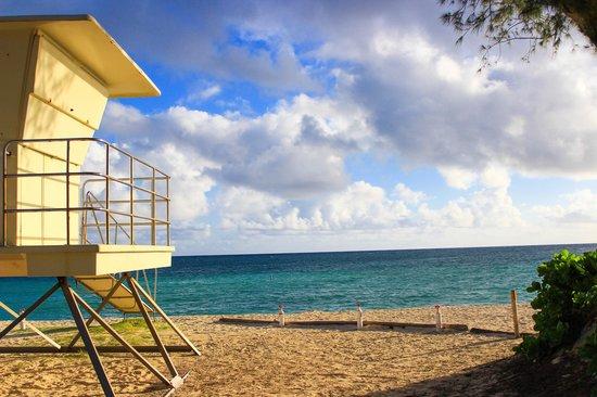 Kailua Beach Park: kailua bp