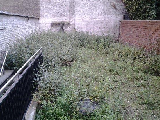 Aryen Residence: le jardin