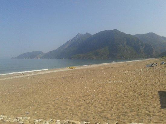 Villa Iz: Strand am Tag