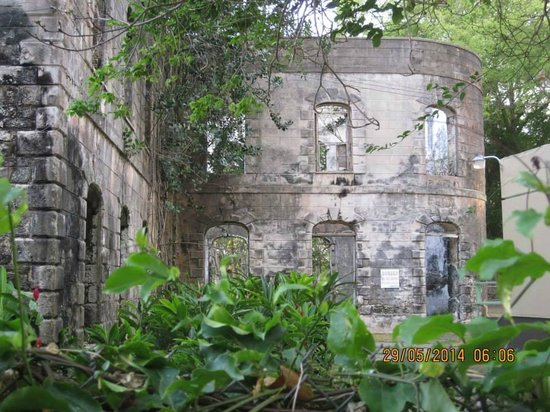 Eco Adventures Barbados - Day Tours : Ruins of Farley Hill Great House