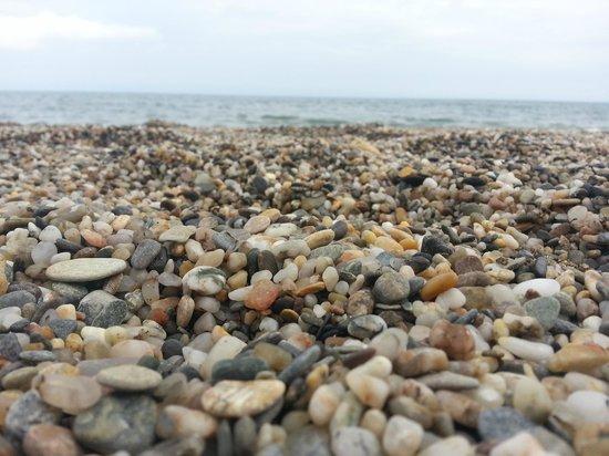 Evenia Zoraida Park : Beach