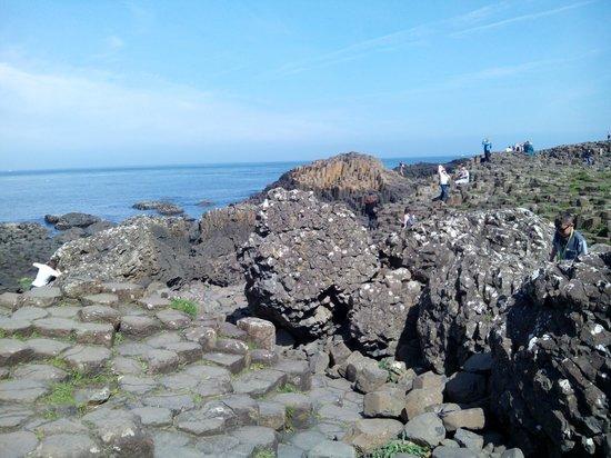 Irlanda en Espanol : Calzada del gigante