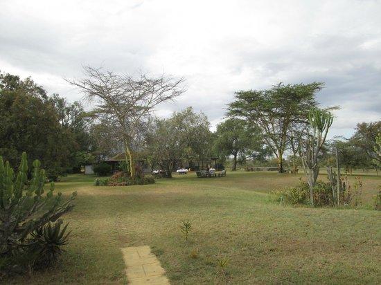 Mount Longonot Lodge: patio
