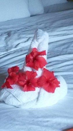 Royal Decameron Club Caribbean : Towel Decoration