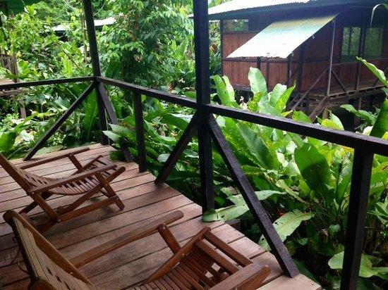 Amazon Planet: Balcony