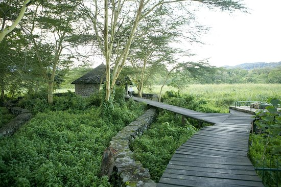 Kiboko Lodge: Walkway