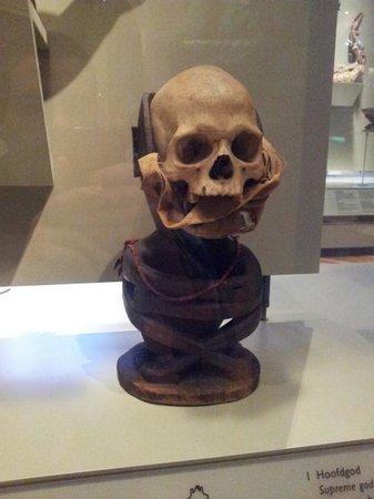 Tropenmuseum : Human skull