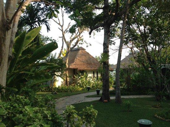 Paradee Resort: the room area