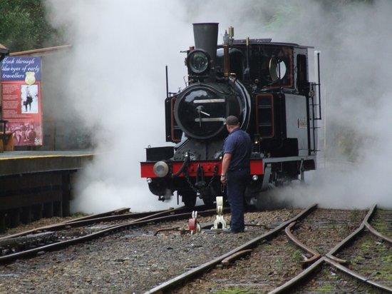 West Coast Wilderness Railway: A Good Head of Steam