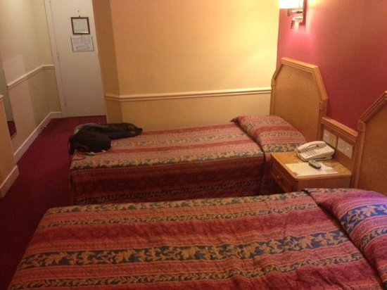 Harcourt Hotel: Camera