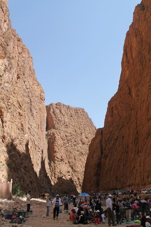 Camel Excursions Morocco : Todra Gorge