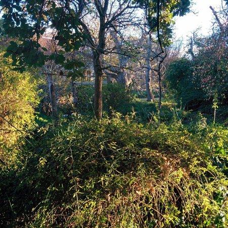 Corinella Country House : The garden