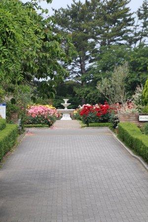 Hamamatsu Flower Park: ローズガーデン入口