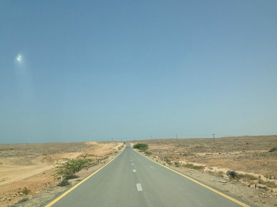 The Turtle Beach Resort (Ras al Hadd) : Long road to hotel