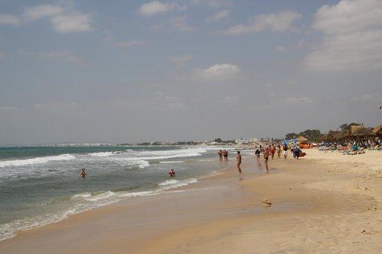 Dessole Le Hammamet Resort: Пляж