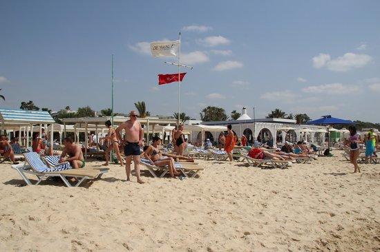 Dessole Le Hammamet Resort: Вид на пляж с моря
