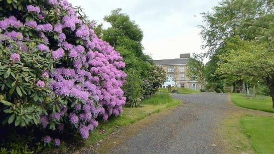 Gilsland, UK: Garden View
