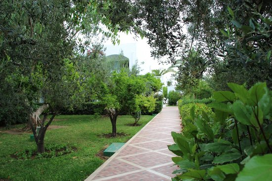 Dessole Le Hammamet Resort: Территория отеля