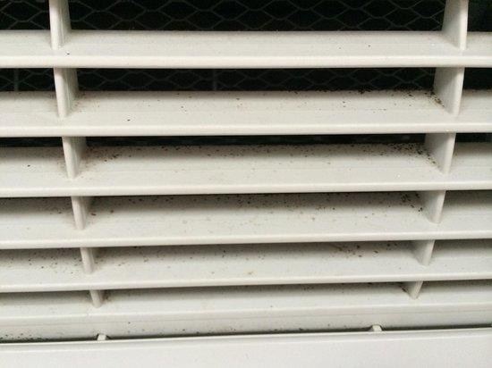 Baymont Inn & Suites Boone: Mold (?) on vents. (5/28/14)