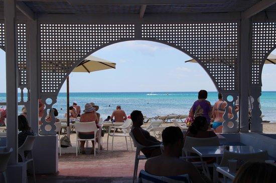 Dessole Le Hammamet Resort: Вид из бара на пляже