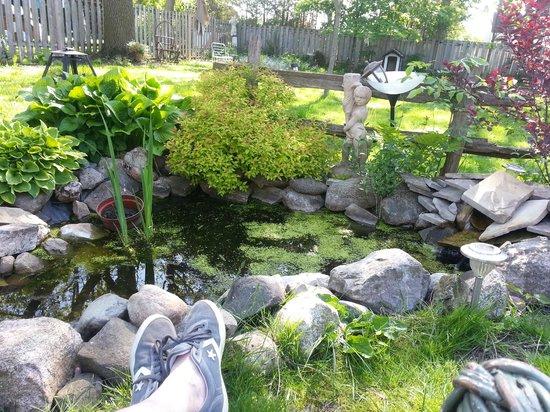 The Gregory Bed & Breakfast: Back garden