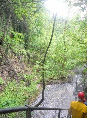 Canyon Rio Sass: Tra la natura