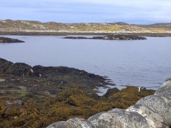 Isle of Coll Hotel: view of the bay