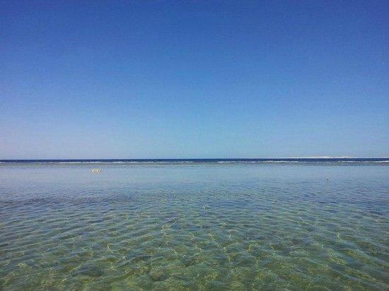 Park Inn by Radisson Sharm El Sheikh Resort: Красивое красное море!