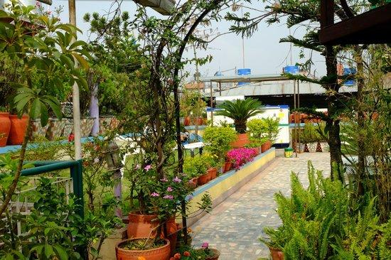 Hotel Pleasure Home Pvt.Ltd: Roof