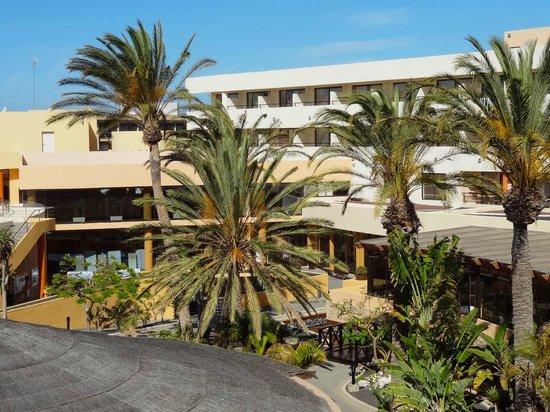 Iberostar Playa Gaviotas: Hotelgelände