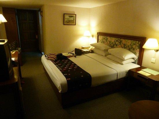 Alfa Hotel: Double room