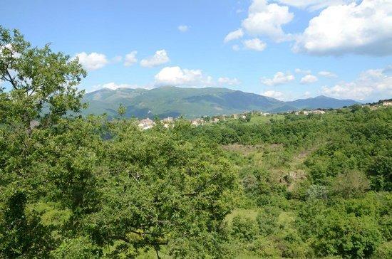 Agriturismo Antico Borgo di Vallignano: Panorama dei dintorni