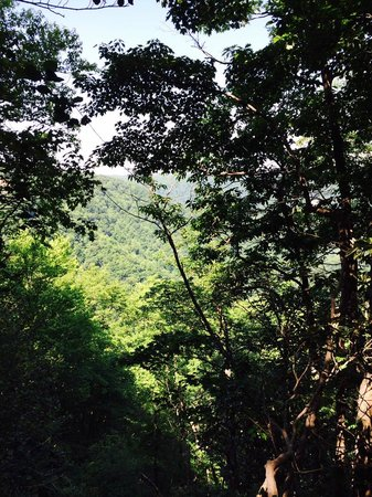 Primland: Hiking Views