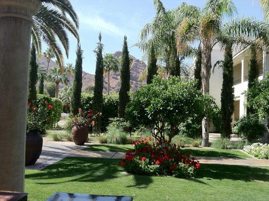 Omni Scottsdale Resort & Spa at Montelucia: Garden