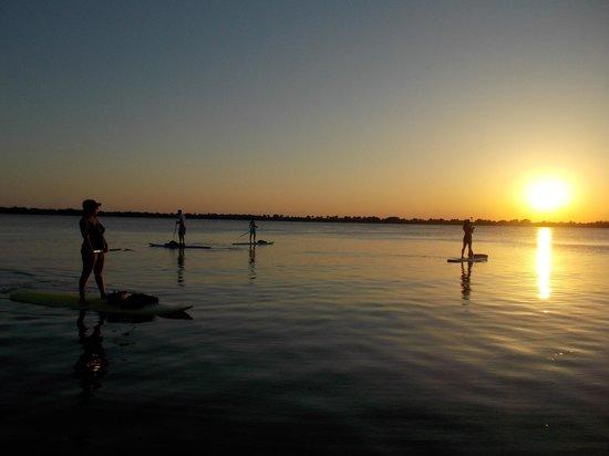 Paddleboard Winter Haven: Enjoy the Sunset Cruise
