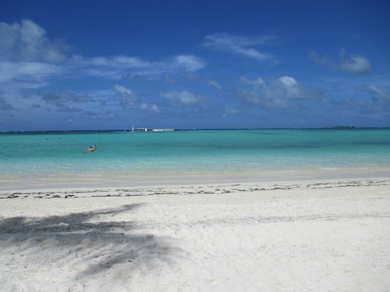 Barcelo Bavaro Beach - Adults Only: Breathtaking