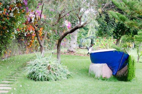 Tildi Hotel & SPA: Boat Garden