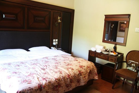 Dellas Boutique Hotel: room