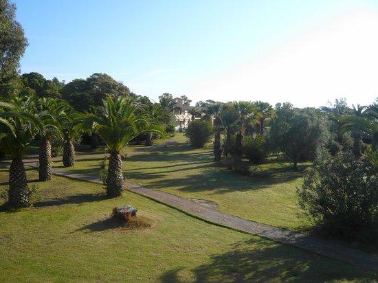 Hotel Costa dei Fiori : View from my room