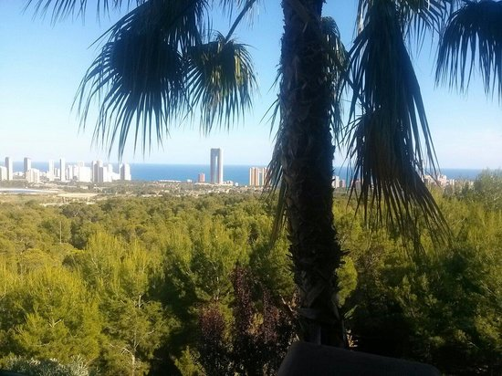 Barcelo Asia Gardens Hotel & Thai Spa: Vistas de la habitacion