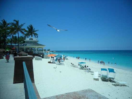 Comfort Suites Paradise Island : One of Atlantis beaches