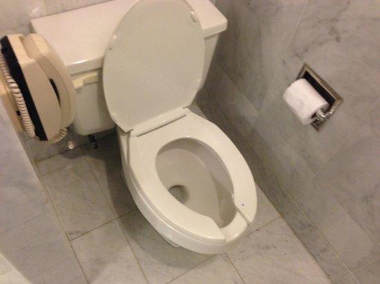 Park Hyatt Toronto: Guest Toilet