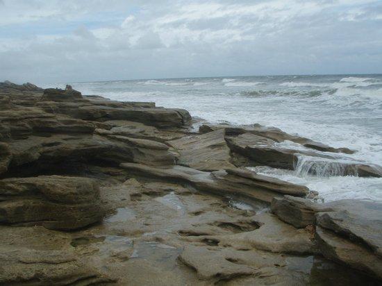 Washington Oaks Gardens State Park: View of ocean at Coquina Rocks Beach
