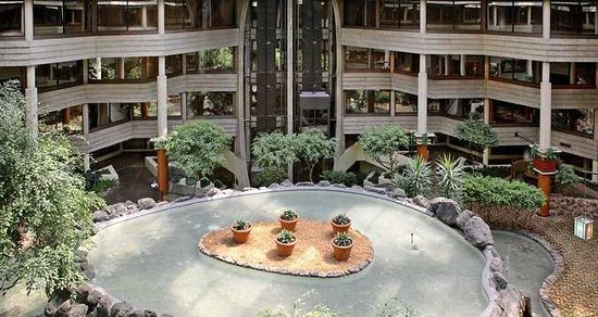 Hilton Chicago Indian Lakes : Atrium