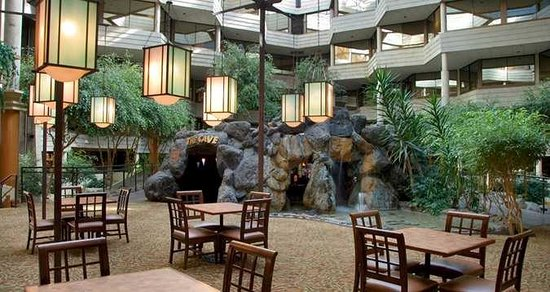Hilton Chicago/Indian Lakes Resort: Atrium