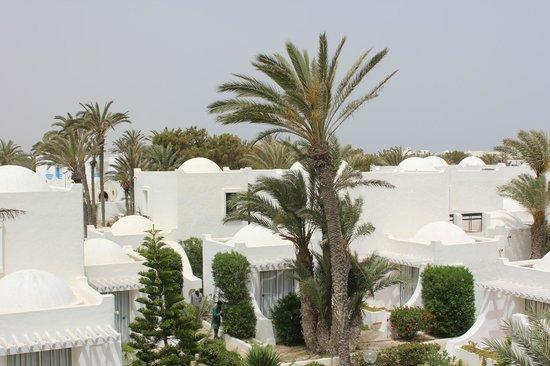 Al Jazira Beach & Spa : Jardin et bungalow